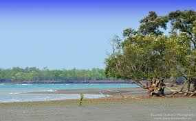 Sundarbans - natural beauty of Bangladesh