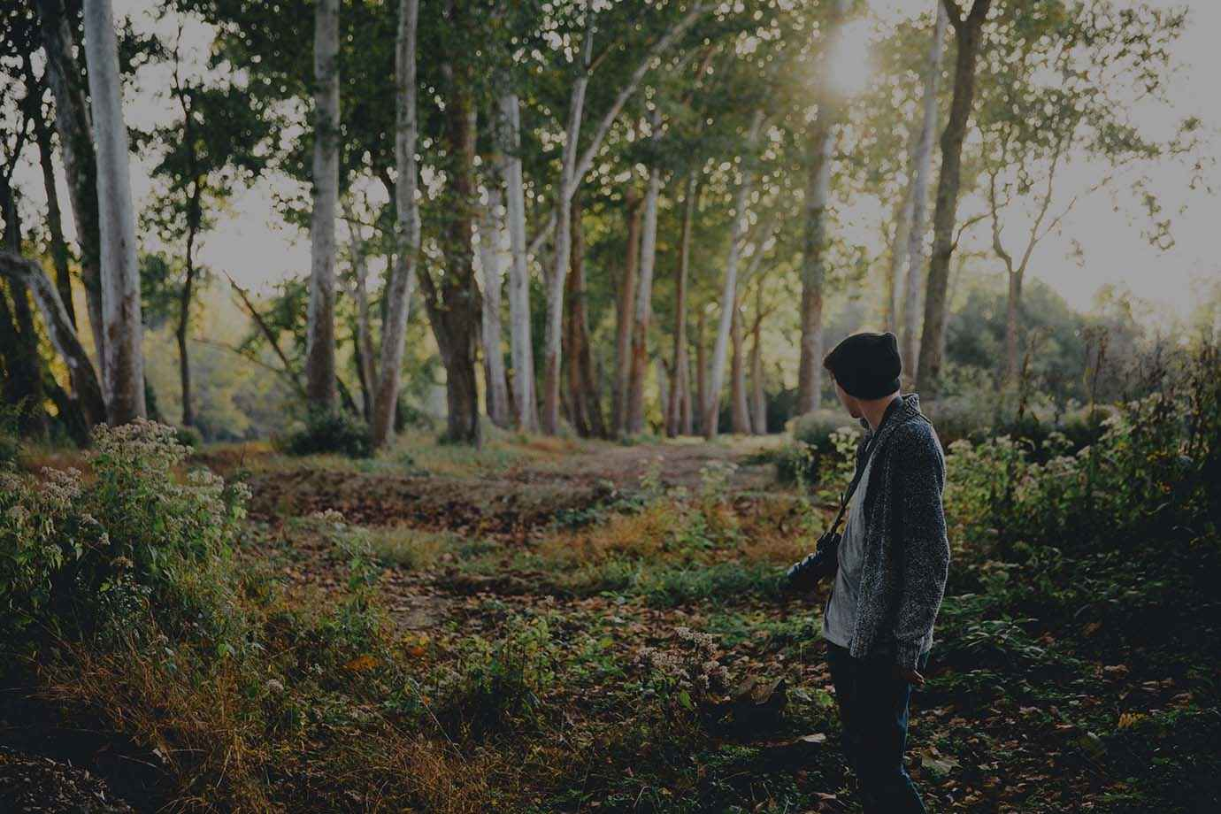 Someone standing with a photo camera in a forest surrounded by trees.